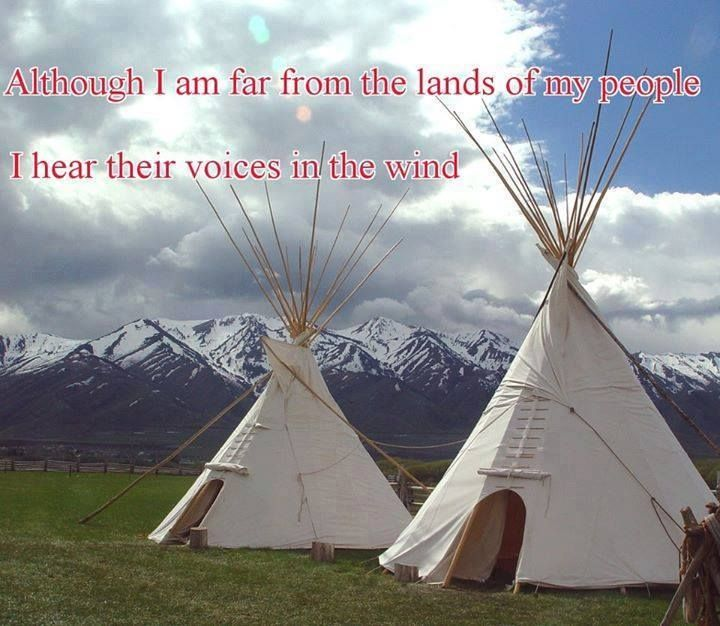 1000 Ideas About Girls Teepee On Pinterest: 1000+ Images About AMERICAN INDIAN QUOTES & SAYINGS On Pinterest