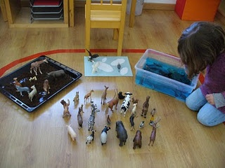 "sorting animals that walk, fly or swim - we need to do more ""sorting into category"" activities"