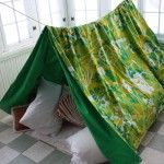 Beat the winter blahs! Throw an indoor camping party!