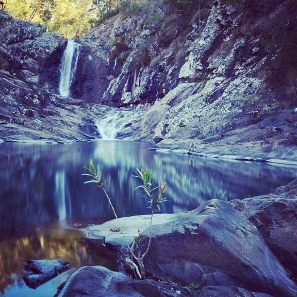 Cedar Creek Falls, Gold Coast Australia. - @laurenepbath_ih- #webstagram