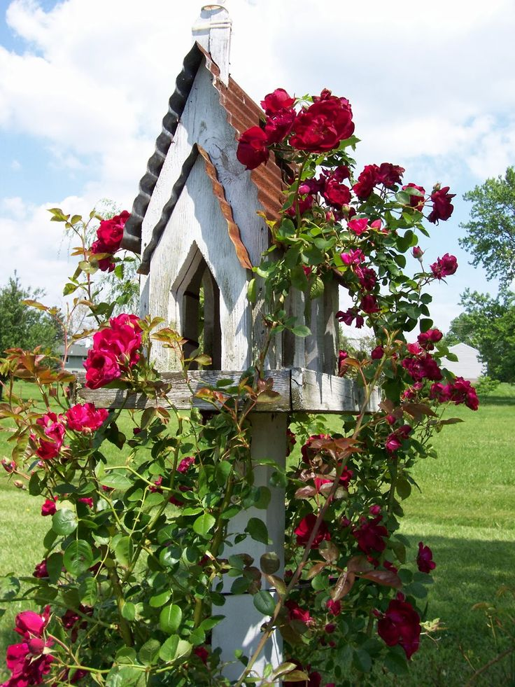 Garden Whimsy- Try to remember to plant a pretty climbing rose at the base of my bird house. From Sweet Vintage of Mine