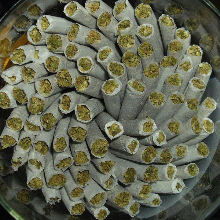 Buy weed online Weed for sale Buy cannabis oil online Buy marijuana online Where to buy cannabis  Place Your Order At: www.realweedshop.com  All orders are custom and discreetly done by email or phone only to keep your information secured and fully confidential.