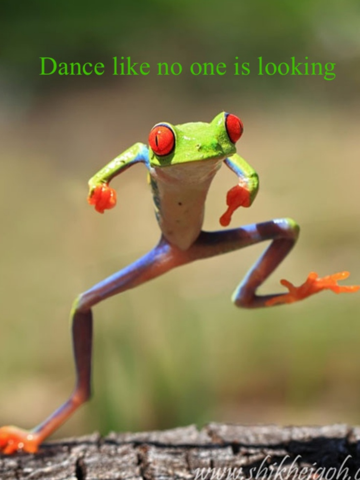 Dance like no one is watching. True of Mark and all of his friends.