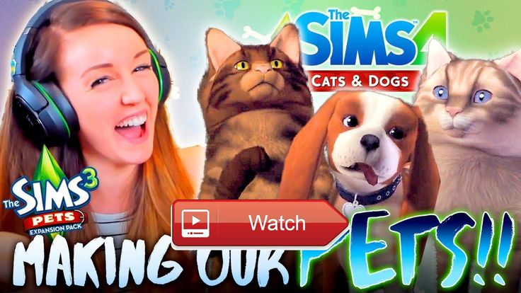 GETTING HYPED FOR SIMS CATS DOGS Making our Pets in Sims  ARE YOU EXCITED FOR SIMS CATS DOGS If you have Sims tweet me your Sims pets in CAS Meet me DIGITAL KIDS SHOW  on Pet Lovers