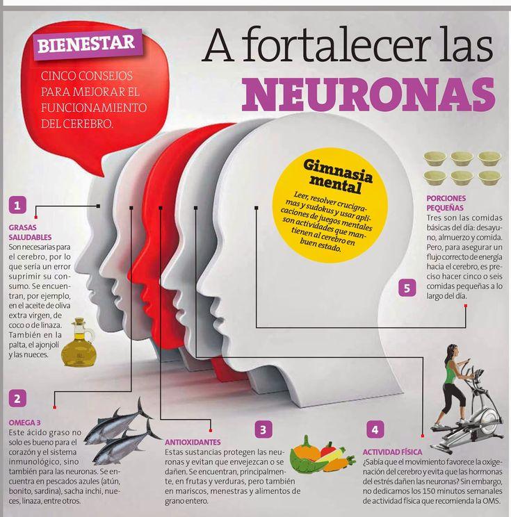5 consejos para fortalecer tus neuronas y mejorar tu gimnasia cerebral ¡No olvides el Omega 3!