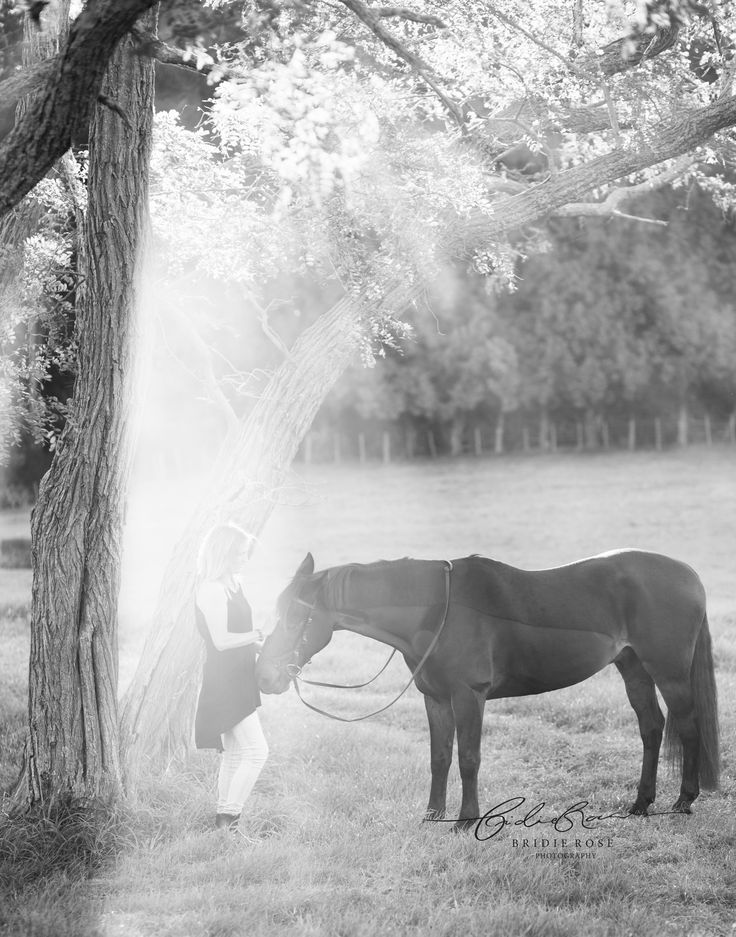 Equine Photographer | New Zealand | Bridie Rose Photography