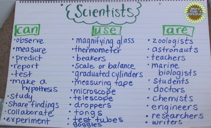 What is a Scientist? Simple anchor chart, free printable graphic organizer and other ideas from More Than a Worksheet