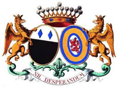 Tout sur l'héraldique : dessin de blasons et d'armoiries: CHRISTYN DE RIBAUCOURT-THIENNES : armorial des all...