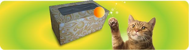 6 Easy Cat Toys that You Can Make at Home - Friskies® Post Blog