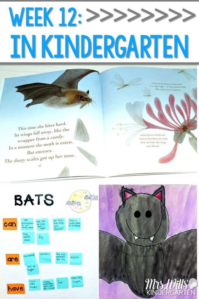 Kindergarten Lesson Plans Week 12 Bat Loves The Night Ideas For Reading Writing Math Craft And Center Activities Too Free Editable
