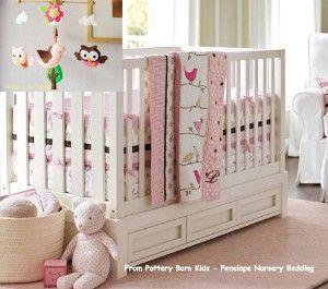 Baby Girl Owl Room Decor
