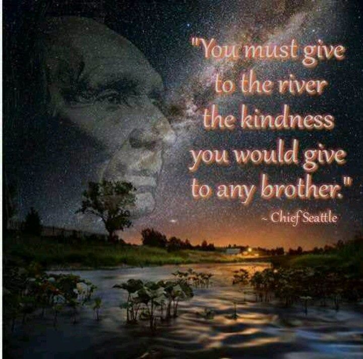 Native American Indian Wisdom. Rivers are the veins of life on Earth. Drink out of one lately?? Why Not?