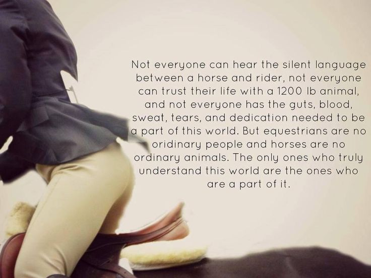 Not everyone can... #Riding #Equestrian #Quote