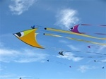 Kitt Kites.com- - online kite store Brenton Point Kites, Newport, Middletown, Narragansett, Rhode Island, RI, Brenton Point State Park