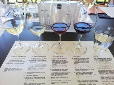 wine tasting, wine flight