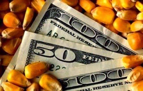 us corn futures