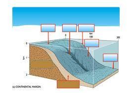 Lereng benua (continental slope) adalah suatu lereng di dasar laut yang terletak antara paparan benua dan daerah laut dalam.