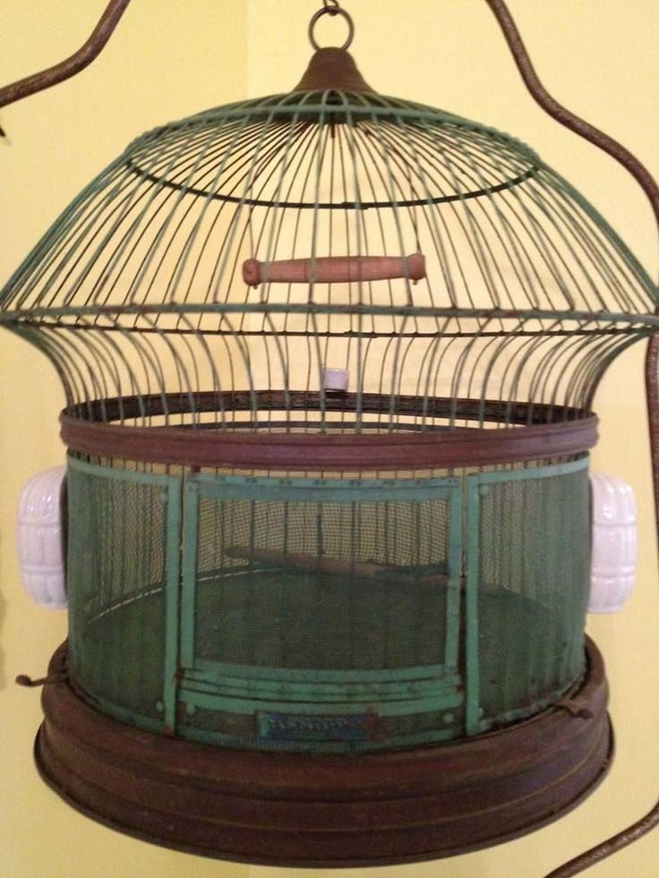 antique bird cages threads in time by pallas antique bird cage jaulas