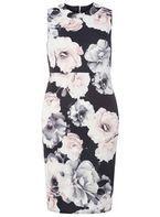 Womens Petite Rose Print Scuba Dress- Black
