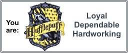 I got sorted into Hufflepuff. I tried taking it multiple times and it always ends up like that. I accept my fate. Ravenclaw second and third was a tie between Gryffindor and Slytherin.