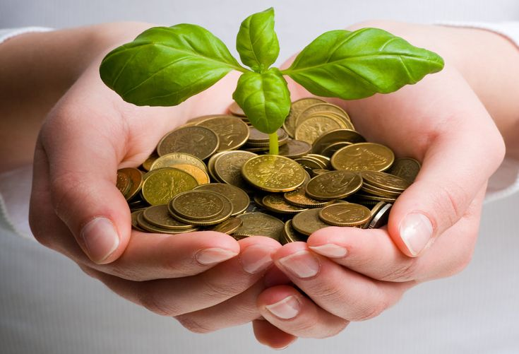5 Cosas Que Debemos Hacer Para Cuidar El Medio Ambiente Contaminacion Salud Ecologia Soluciones Money Market Account Best Savings Account Venture Capital