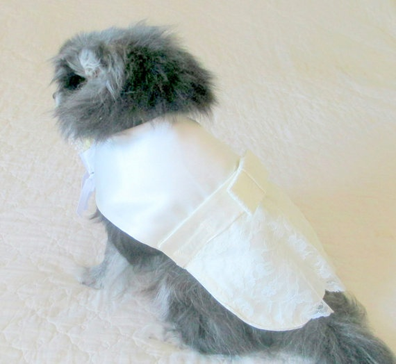 Dog Wedding Dress Made to Order Toy Breed  by BloomingtailsDogDuds, $39.95