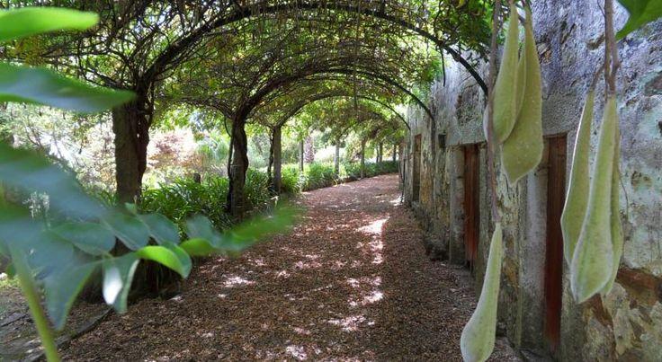 A Quinta do Bento Novo é uma agradável casa de campo, ideal para grupos muito grandes e para quem procura um refúgio rural, em contacto com a natureza, mantendo curta distância do ambiente urbano de Viana do Castelo
