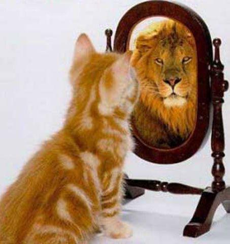 Cómo eres y cómo te ven los demás... ¿coincide? Es muy importante hacerte esta pregunta a la hora de crear tu identidad de marca o tu identidad personal