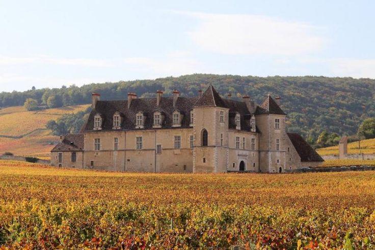 Situé sur la route des vins de Bourgogne, entre Dijon et Beaune, le Clos-Vougeot est situé au cœur même d'un des plus célèbres vignobles du monde. Bontourism® vous emmène sans plus attendre.