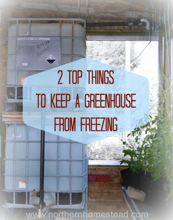 With good insulation, lots of thermal mass and a back up heating you can keep a greenhouse from freezing for winter vegetable growing up north in the cold.
