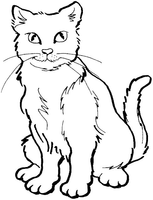 cat color pages printable home coloring pages cat coloring pages sitting cat