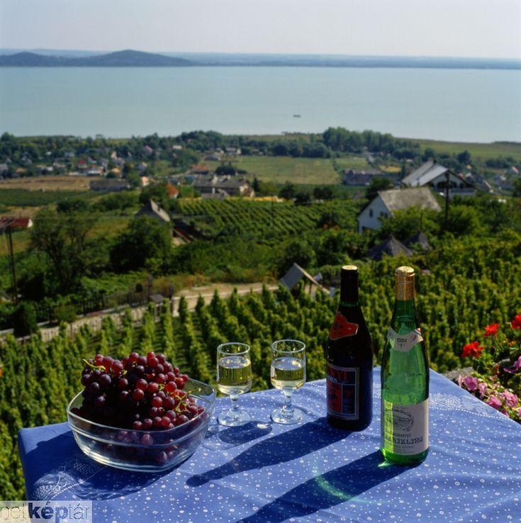 Balaton,Hungary,wine,Badacsony