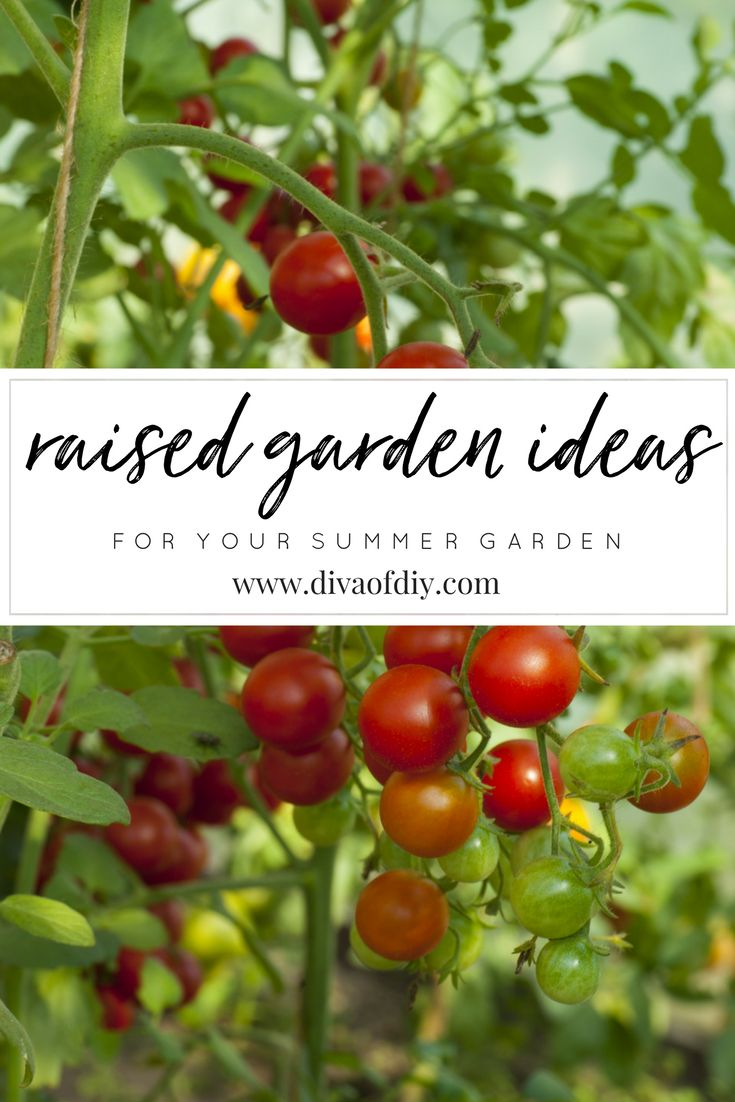 Raised garden Beds take the hassle out of gardening.  No more tilling and raking the soil, picking weeds and breaking your back to produce a bountiful crop.    http://divaofdiy.com/raised-garden-ideas/?utm_campaign=coschedule&utm_source=pinterest&utm_medium=Diva%20of%20DIY%20%7C%20Tutorials%20For%20Your%20Favorite%20DIY%20Projects&utm_content=DIY%20Raised%20Garden%20Ideas%20for%20Your%20Summer%20Garden