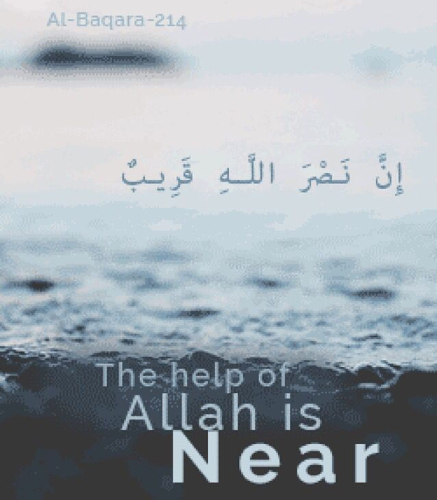 """""""Or do you think that you will enter Paradise while such [trial] has not yet come to you as came to those who passed on before you? They were touched by poverty and hardship and were shaken until [even their] messenger and those who believed with him said,""""When is the help of Allah ?"""" Unquestionably, the help of Allah is near."""" -- Surah Al-Baqarah [2:214]"""