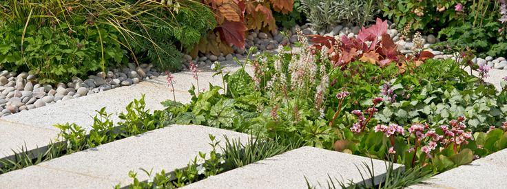 10 best rhs tatton park flower show gardens images on for Pip probert garden designer