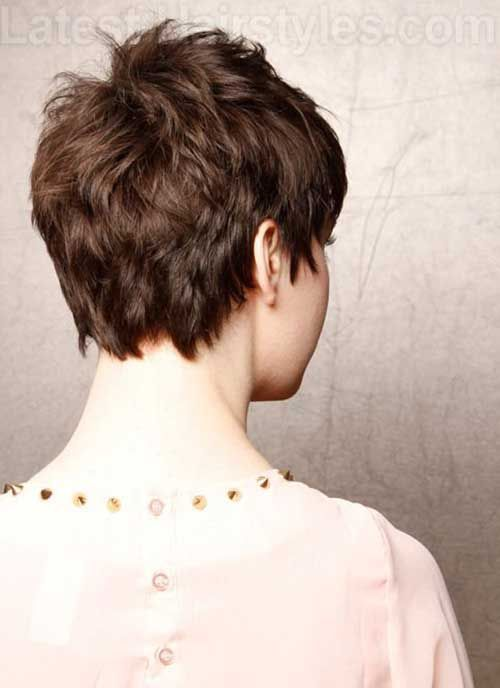 Back of Best Pixie Cut for Thick Wavy Hair