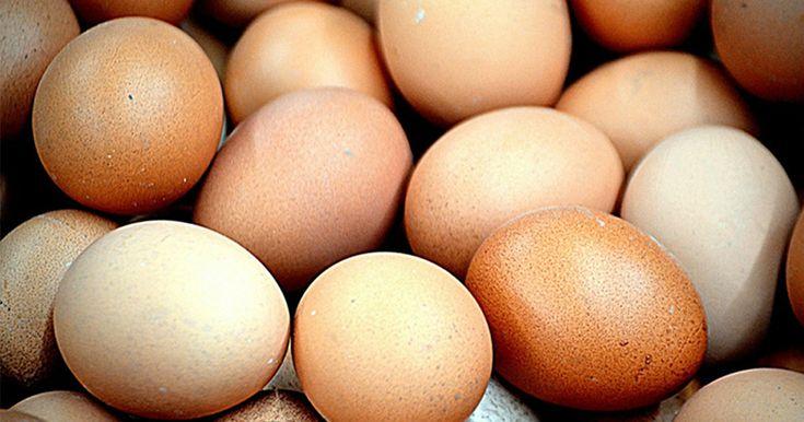 Derfor må du aldrig nogensinde stille æg i køleskabet