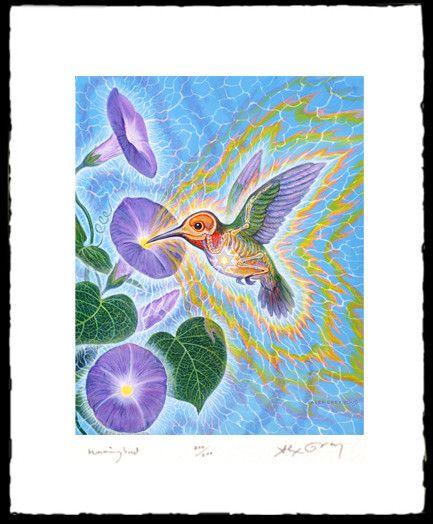 Hummingbird - Paper Print