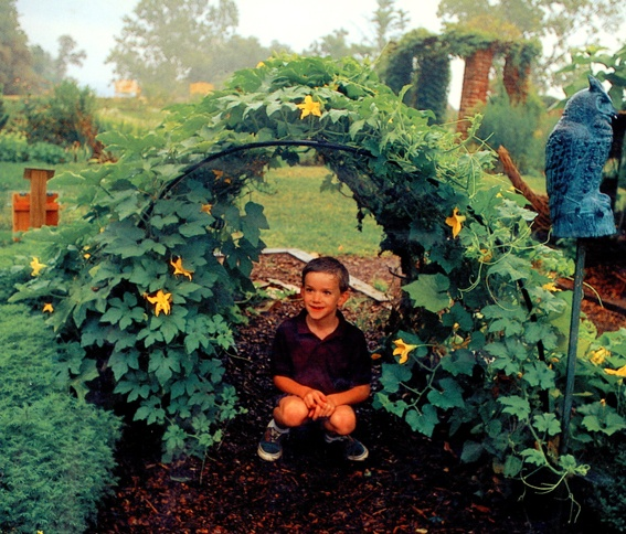 Top 19 ideas about community garden on Pinterest Gardens