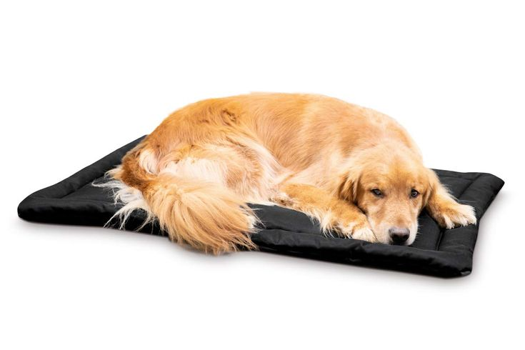 K9 Ballistics Tough Dog Crate Pad Washable Paid Link Details Can Be Found By Clicking On The Image Dog Crate Pads Dog Crate Mats Dog Crate Bed