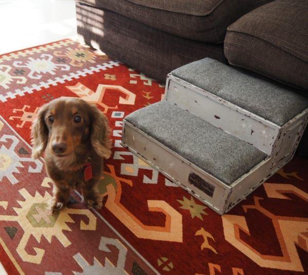 連載 材料はすべて100均 オシャレなペット用ステップを作ろう Folk ドッグステップ 犬のケージアイデア ペット