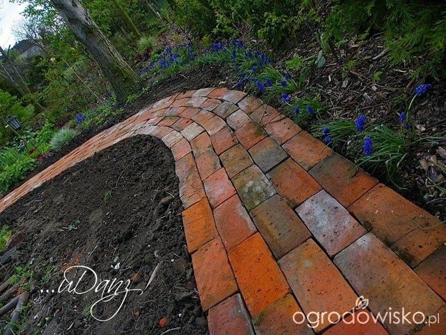 http://www.ogrodowisko.pl/watek/7407-udany-ogrod?page=167