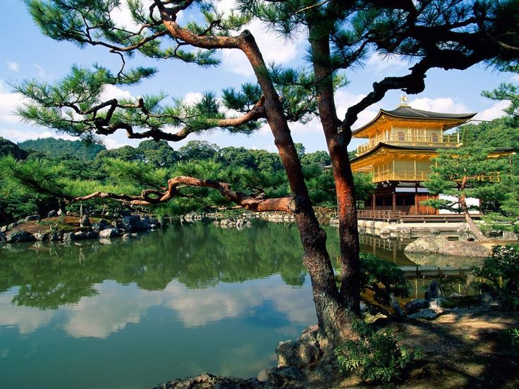 Kyoto: Bucket List, Temples, Favorite Places, Beautiful Places, Places I D, Kinkakuji, Travel, Kyoto Japan