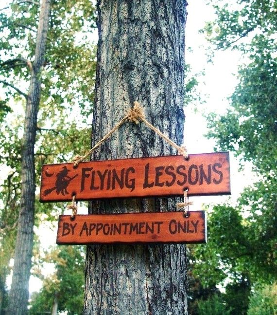 Halloween Sign Decoration Flying Lessons By by TheSnowshoeLoft, $122.00