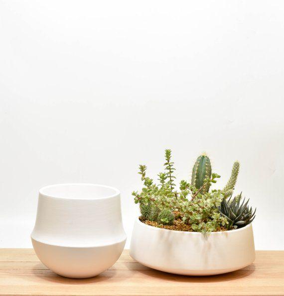 Superb Succulent Planter Succulent Bowl Tabletop Succulent Interior Design Ideas Apansoteloinfo