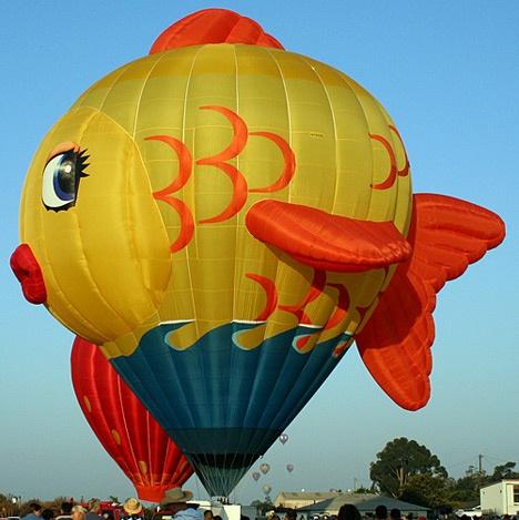 Fish: Big Fish, Fish Balloon, Airballoon, Hot Air Balloon, Balloon Festival, Hotair Balloon, Air Balloon Riding, Beautiful Balloon, Flying Goldfish
