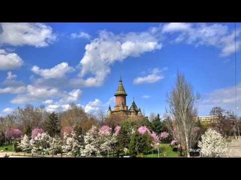 Timisoara my town