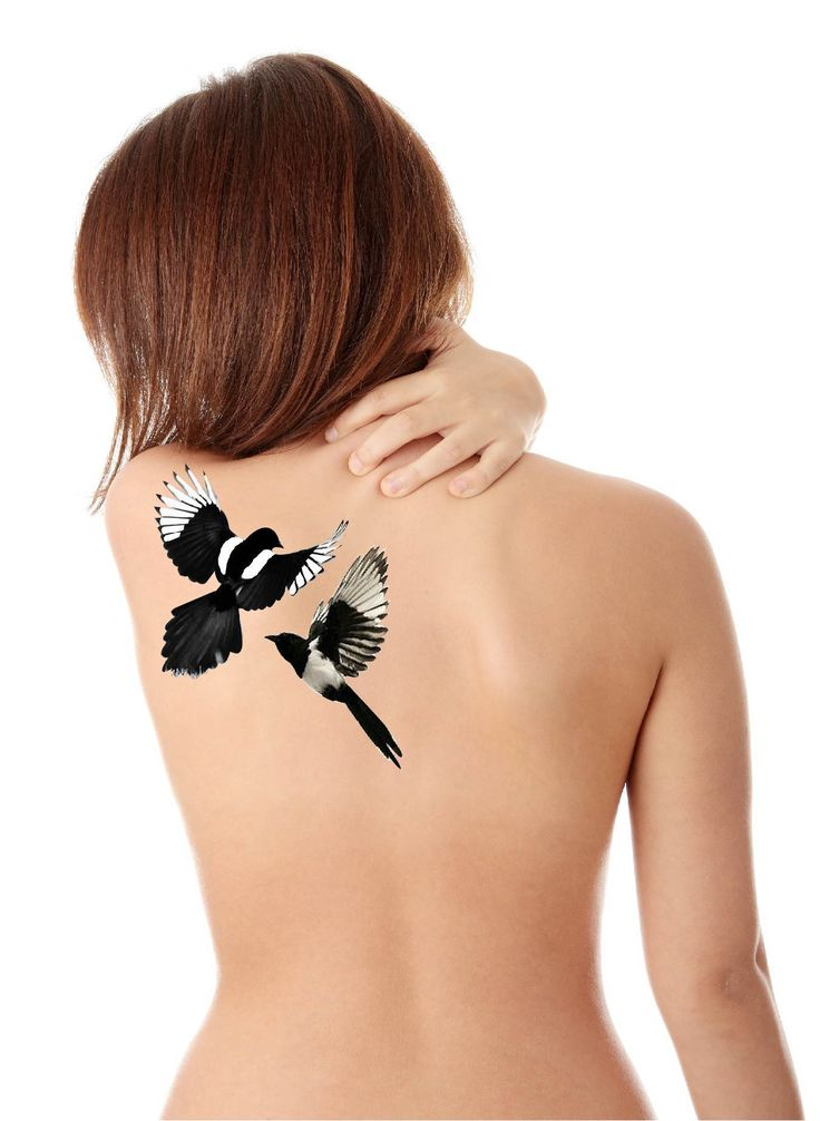 Magpie tattoo #back #tattoo #magpie