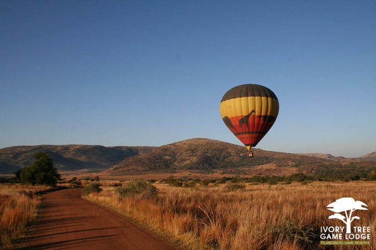 Ivory Tree Game Lodge - Big Air Balloon Ride
