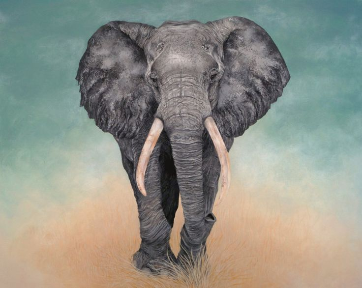 Best 25 elephant paintings ideas on pinterest elephant art colorful elephant and oleo painting for Peinture acrylique sur toile